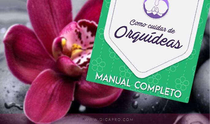 manual como cuidar de orquideas
